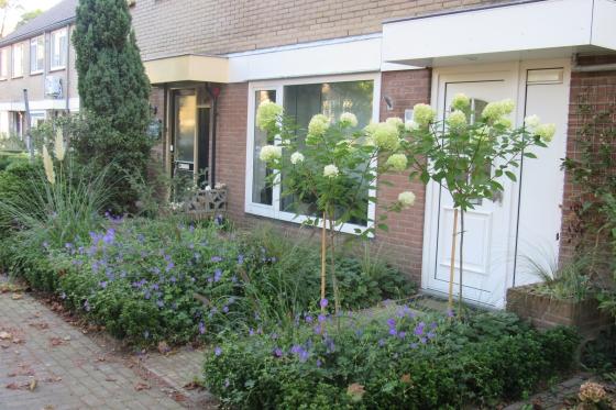 Functioneel en bloemrijk bij rijtjeshuiste Nunspeet 1e jaar (5)